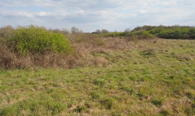 Stop au parc photovoltaîque en milieu naturel à Orléans