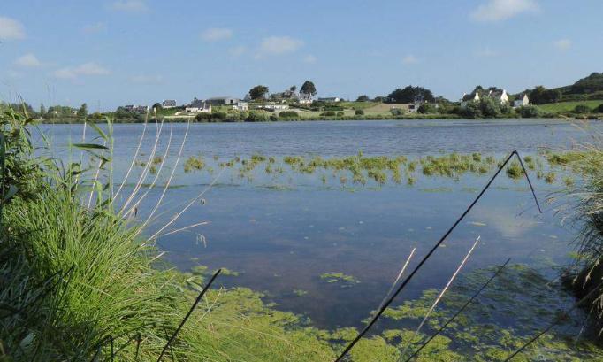 Kerlouan - L'étang du Pont est menacé de disparition