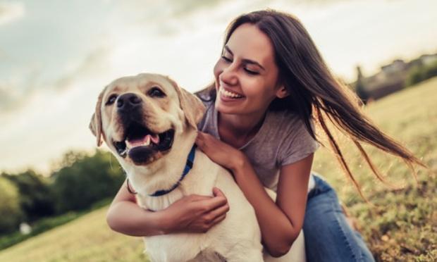 Permis de détention pour tout propriétaire de chien