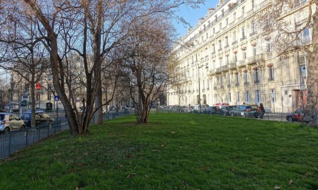 Pour la création d'un parc canin Place du Général Catroux !
