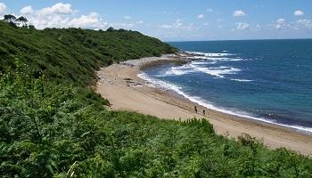 Pétition : Pour la mise en place d'une zone de référence sur le littoral Basque !