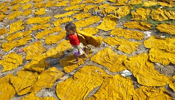 Petition : The tanneries in Bangladesh are a scandal!