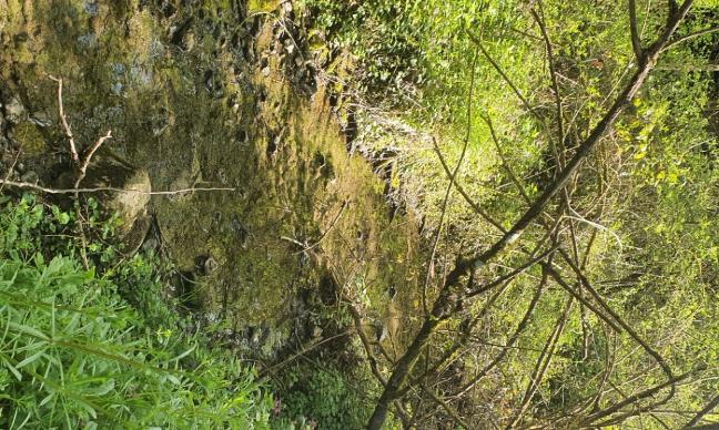 La Comcom  Berry Loire Puisaye doit revenir sur sa décision de ne pas restaurer le Ruisseau des Trappes  dont elle a la charge au titre de la loi GEMAPI