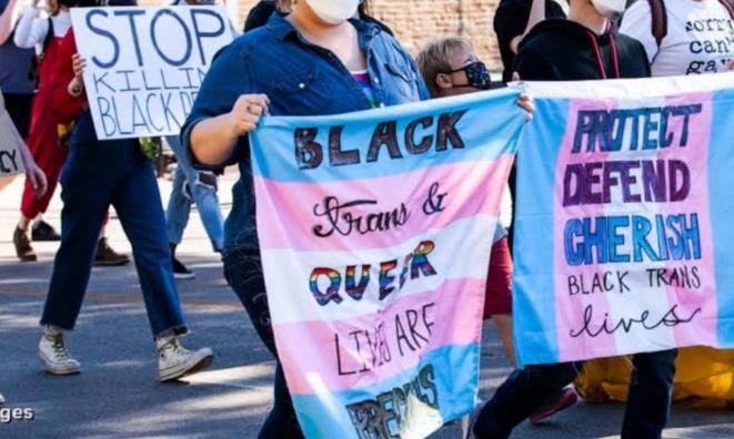 Un soutient total de la communauté TikTok envers la communauté trans identitaire ; non binaire , genderfluid , demi-boy , demi-girl etc...