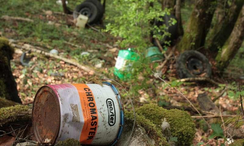 Ecodélinquance : protégeons nos forêts !