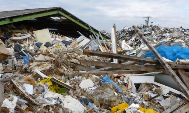Pétition : Mobilisons-nous contre le massacre écologique et sanitaire en cours à la Gare d'eau !
