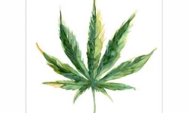 Légalisons la consommation de cannabis