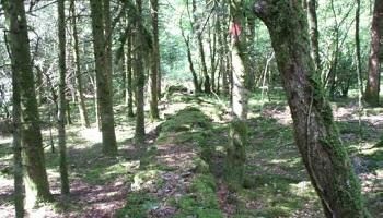 Pétition : Pour des fouilles archéologiques dans le Jura, afin de prouver que le siège d'Alésia a eu lieu là-bas !