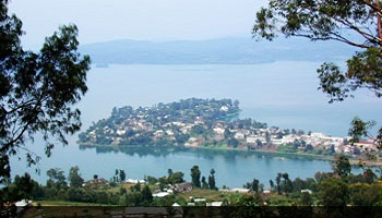 Petition : For peace in Kivu
