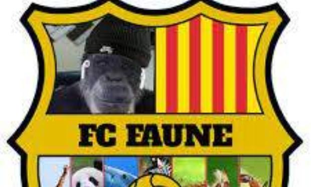 Recreation du FC Faune