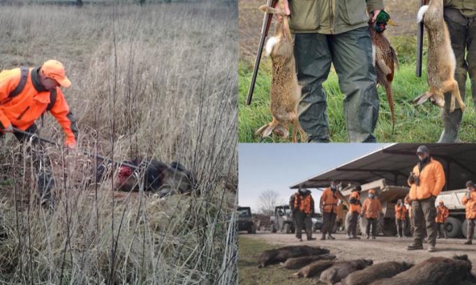 Pour l'abolition définitive de la chasse en enclos en France