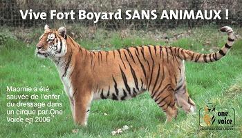 Pétition : Vive Fort Boyard sans animaux !