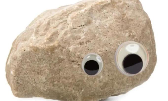 Pétition : Pour le remplacement d'Arneol aka Big Cocchis par un caillou peint avec des yeux