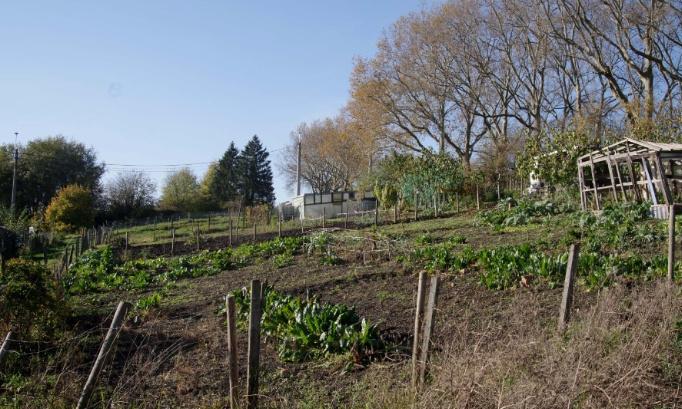 Pour la préservation des jardins et pâtures du Thier-à-Liège !
