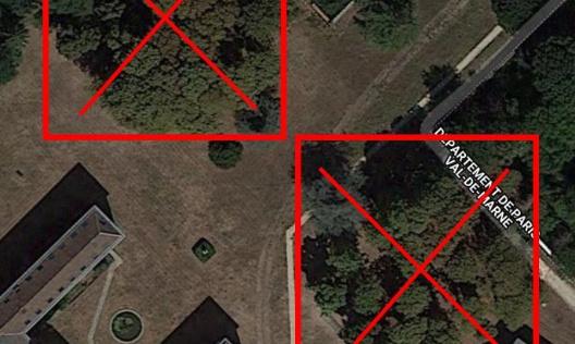 Arrêt des coupes d'arbres et rediscussion du projet d'aménagement du parc