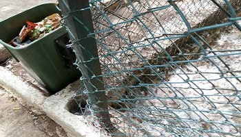 Pétition : Venez en aide aux animaux du jardin historique Lahboul à Meknes