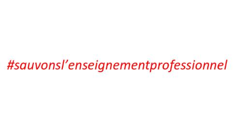 SAUVONS L'ENSEIGNEMENT PROFESSIONNEL PUBLIC SOUS STATUT SCOLAIRE.