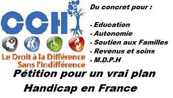 Pétition : Un Vrai Plan Handicap pour la France