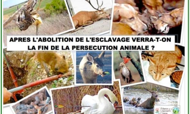 E-manifestation contre les loisirs de mort et de torture des animaux