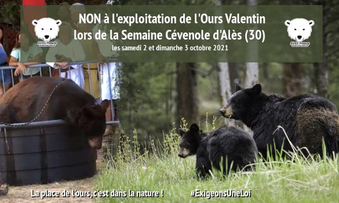 Non à la présence d'un montreur d'ours à la semaine Cévenole d'Alès les 2 et 3 octobre 2021