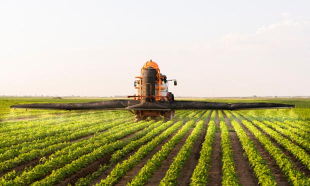 Contre la folie pesticide dans les villes