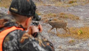 Interdiction de la chasse le week-end