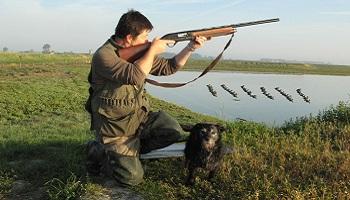 Pour l'arrêt de la chasse le week-end