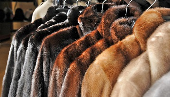 L'interdiction des stands de fourrure à la foire de Genève