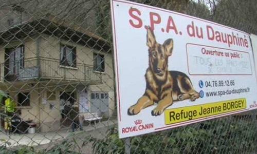 Pétition : Pour que la métropole donne cette année aussi la subvention de 50.000€ à la SPA du Dauphiné