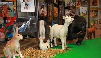 Pétition : Pour l'interdiction des animaux dans toutes les prestations