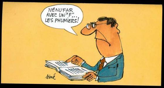 Pétition : Les Francophones de l'étranger se mobilisent contre la réforme de l'ortograf