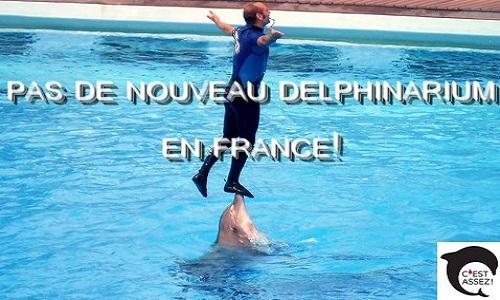 Pas de nouveau delphinarium en France !