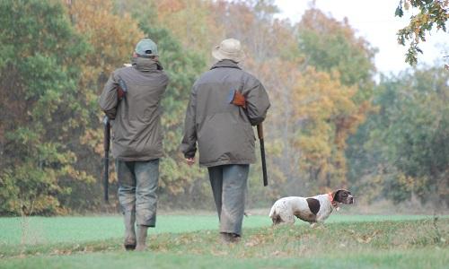 Pétition : Oui à la chasse le dimanche