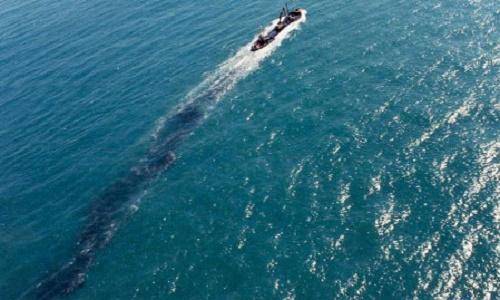 Pétition : Le retrait de brevet d'un capitaine pris sur en flagrant délie de dégazage en mer