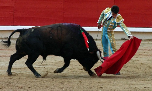 Help ban bullfighting in the Balearics!