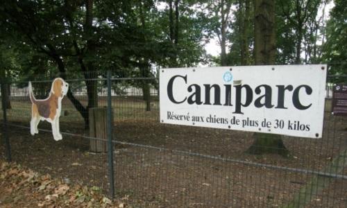 Pour un caniparc : un jardin public pour les toutous citadins