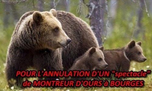 Non au montreur d'ours le 11 et 12 juin à Bourges