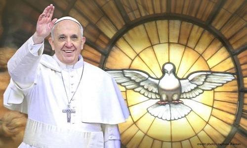 Pétition : Demandons au Pape François d'aider les animaux