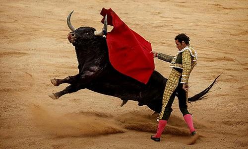 Qu'ils arrêtent de tuer les taureaux à la fin de leur spectacle partout dans le monde !
