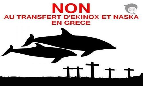 Annulation du transfert de dauphins français vers la Grèce