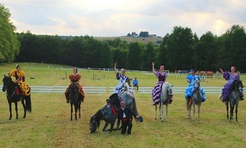 Pétition : Sauvons les chevaux d'un spectacle de maltraitance !