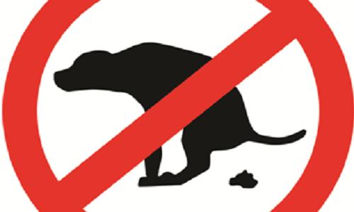 Faire appliquer la loi concernant les déjections canines