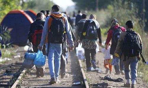 Pétition : Stop aux réfugiés !