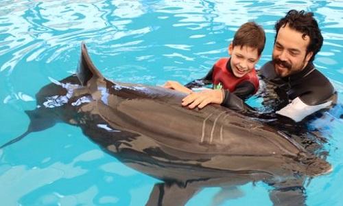Non à la delphinauthérapie