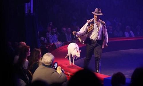 Non aux Cirques avec animaux à Monchy le Preux
