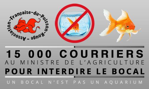 P tition interdire la vente du bocal poisson rouge for Vente poisson rouge tunisie
