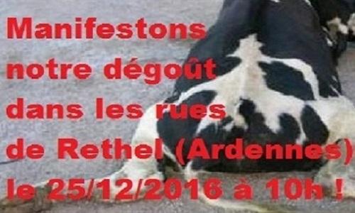 Stop à la maltraitance animale au foirail de Rethel. Pour une manifestation de masse dans les rues de Rethel le jour de noël, le 25/12/2016 à 10h !