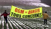 Pétition:OGM : c'est toujours non !!Pas de patate G3M et de culture du maïs MON 810 en Europe!! Petition-img-2599