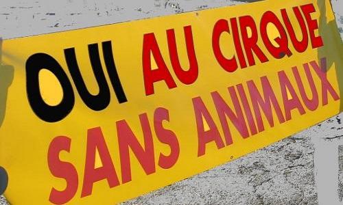 Non aux cirques avec animaux dans notre ville