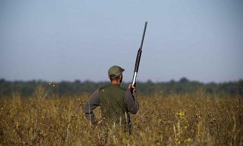 Stop chasse samedi et dimanche, et les autres jours près des maisons